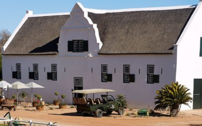 DARLING'S GROOTE POST LAUNCHES FAB NEW SAUVIGNON BLANC