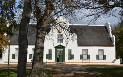 GROOT CONSTANTIA CLEANS UP