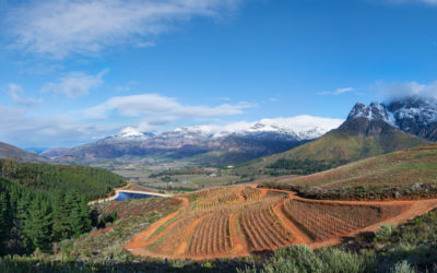 Cape of Good Hope Wines launch two new treasures