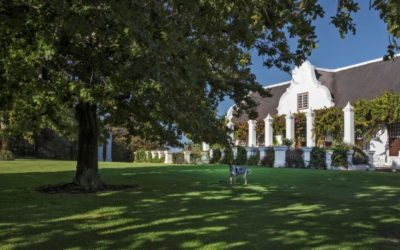 Meerlust Red 2019 promises rare drinking delight